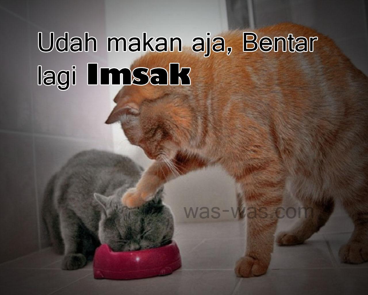 Gambar Meme DP Lucu Sahur WAS WAScom WAS WAScom