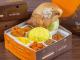 Nasi kuning kotak dapur solo