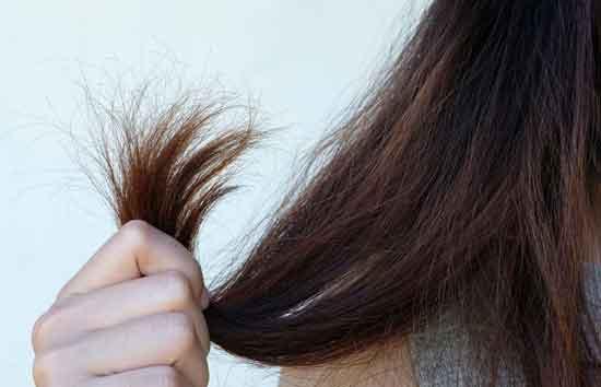 rambut kering dan bercabang