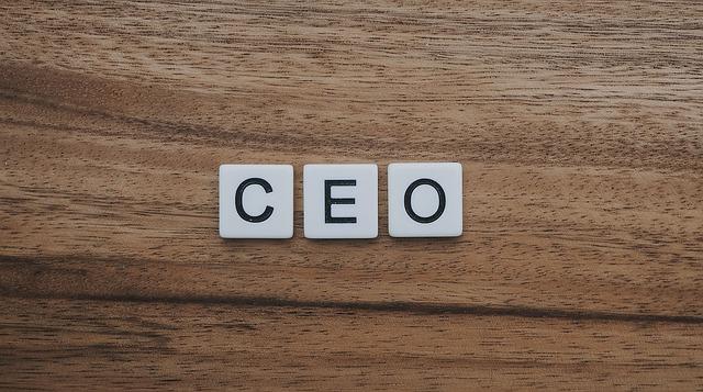 peran pemimpin startup